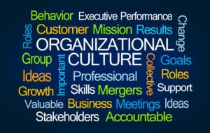 Sparkgroup - Transformation requires new culture to stick